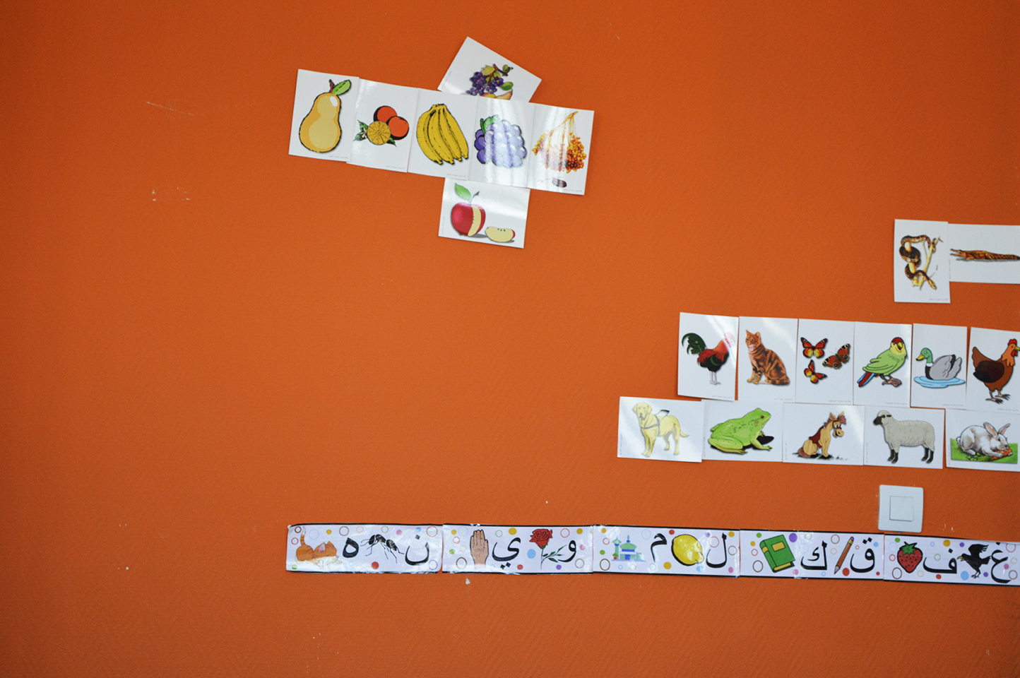 Int.Orange.Basse rés