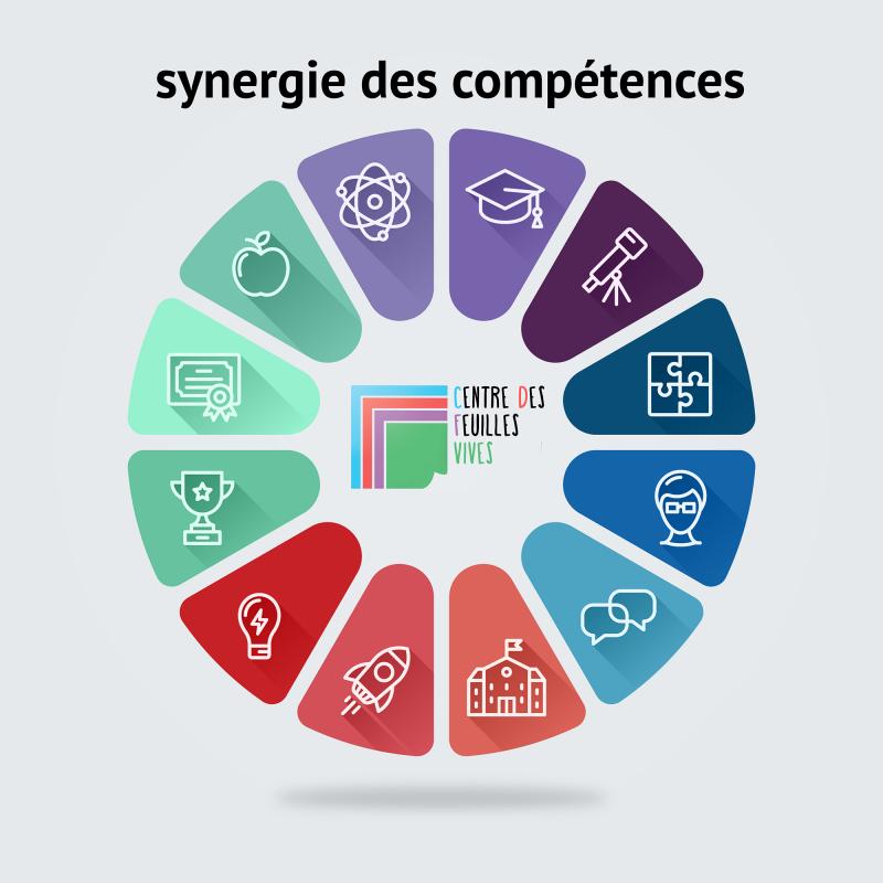 synergie-des-competences